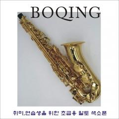 연습용 알토색소폰 BOQING