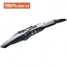 Roland 로랜드 전자색소폰 에어로폰 프로 AE-30